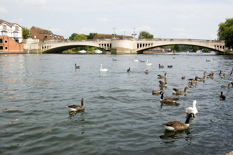 Things To Do In Reading City Guide Reading Serviced Apartments